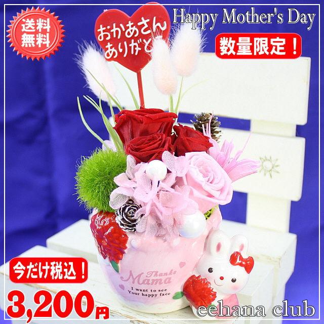 母の日イチオシプリザ!ラビットレッド【送料無料】
