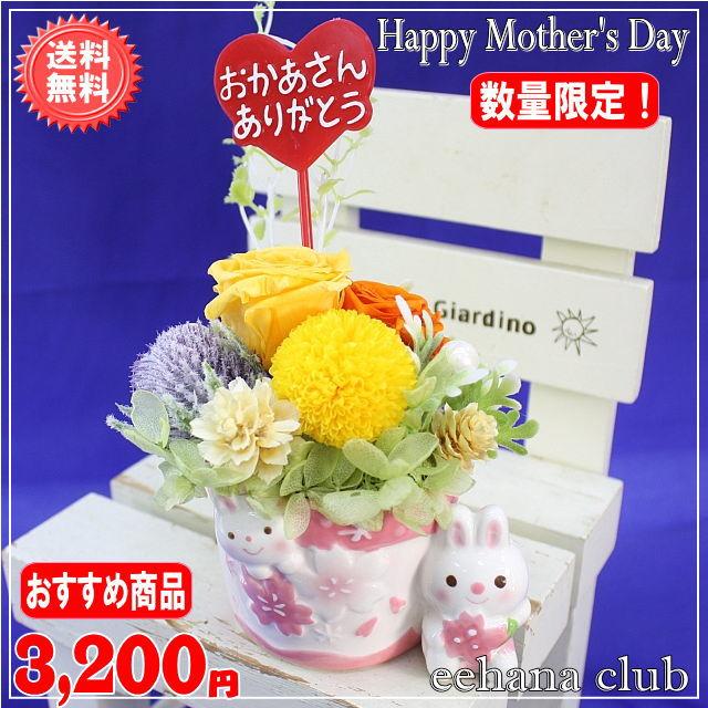 母の日イチオシプリザ!サクラオレンジ【送料無料】